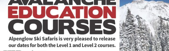 Avalanche Education Courses offered through Alpenglow Ski Safaris